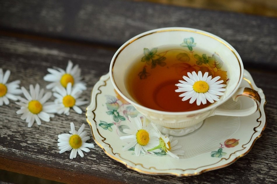 Čaj – sve o čaju u Srbiji
