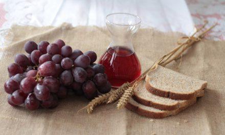 Manastirsko vino i rakija