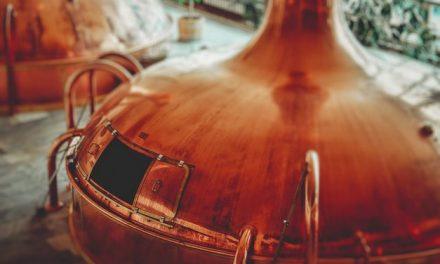 Postupak proizvodnje piva od istorije do danas