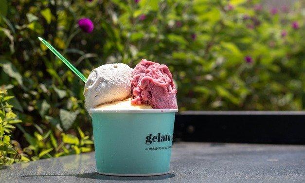 Sladoled – Savršenstvo ukusa za svakog od nas