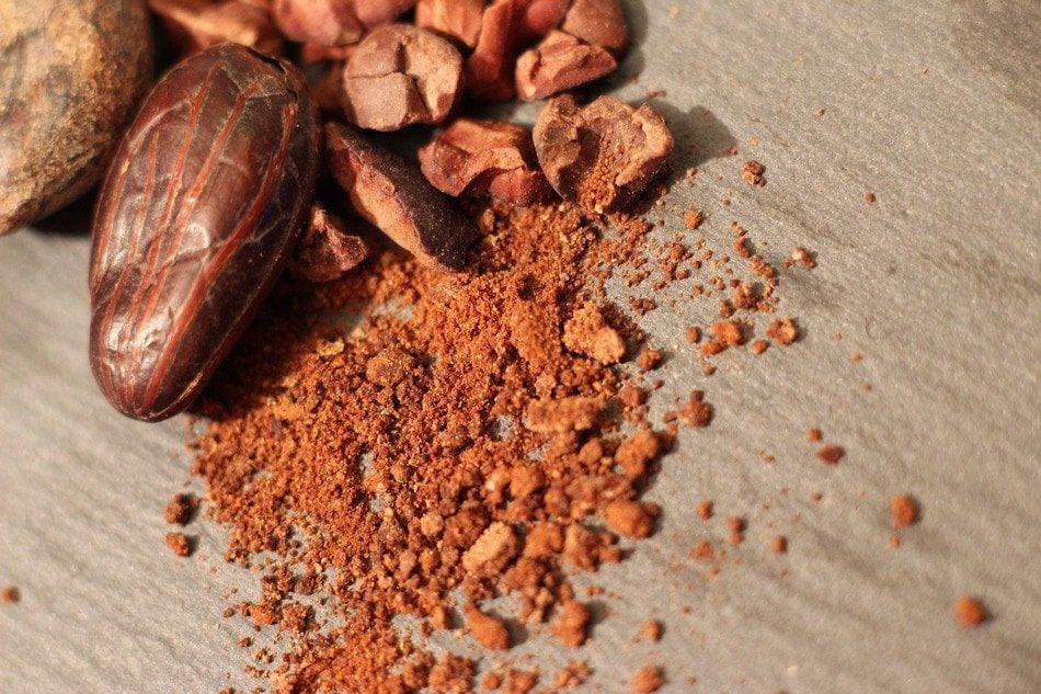 cocoa 3005624 1920
