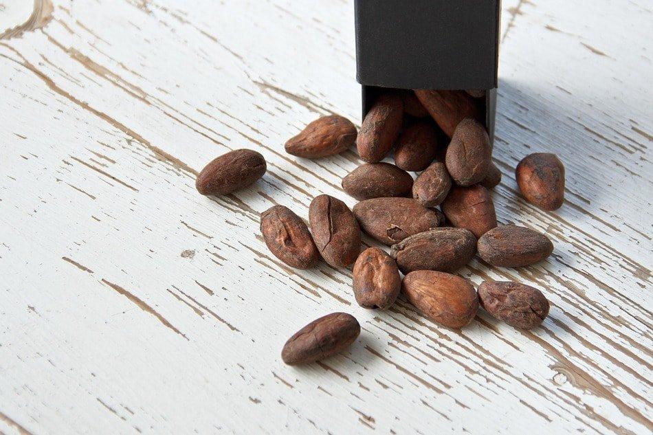 cocoa bean 1282878 1920