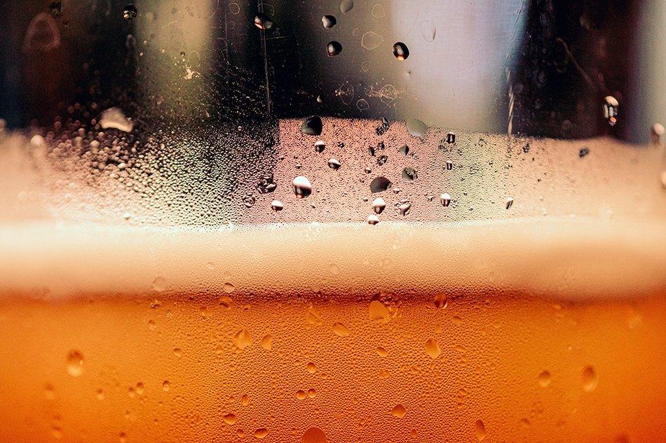 Hmelj u pivu