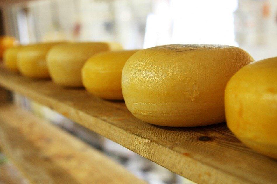 Sirevi – TOP 10 sireva u Srbiji i 5 najpoznatijih u svetu