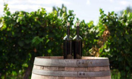 Najaktuelnija vina Srbije – TOP 10