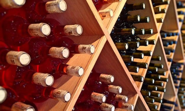Vinarije – Top 10 vinarija u Srbiji