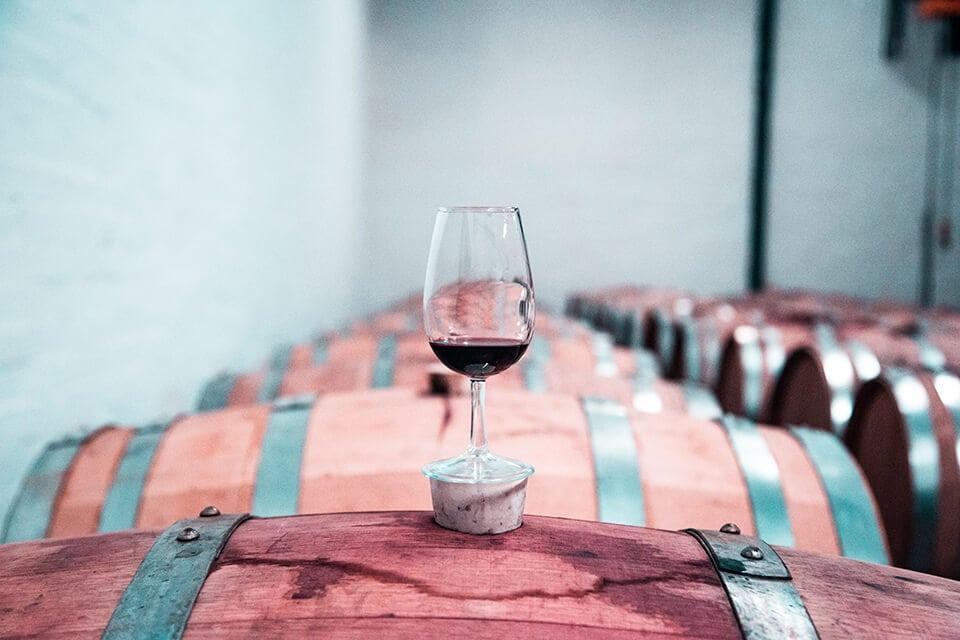 Dunav u sluzbi karlovackog vinogorja