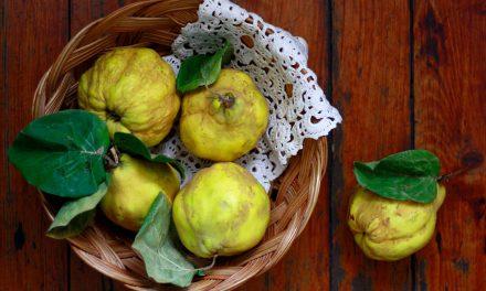 Rakija od dunje – Srpsko žuto zlato