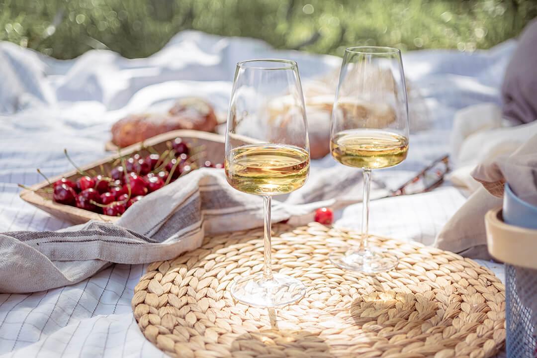02 Kako odabrati case za belo vino