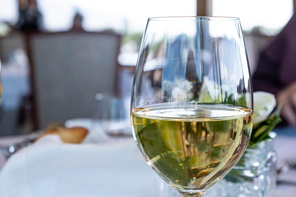05 Tipovi i karakteristike vina