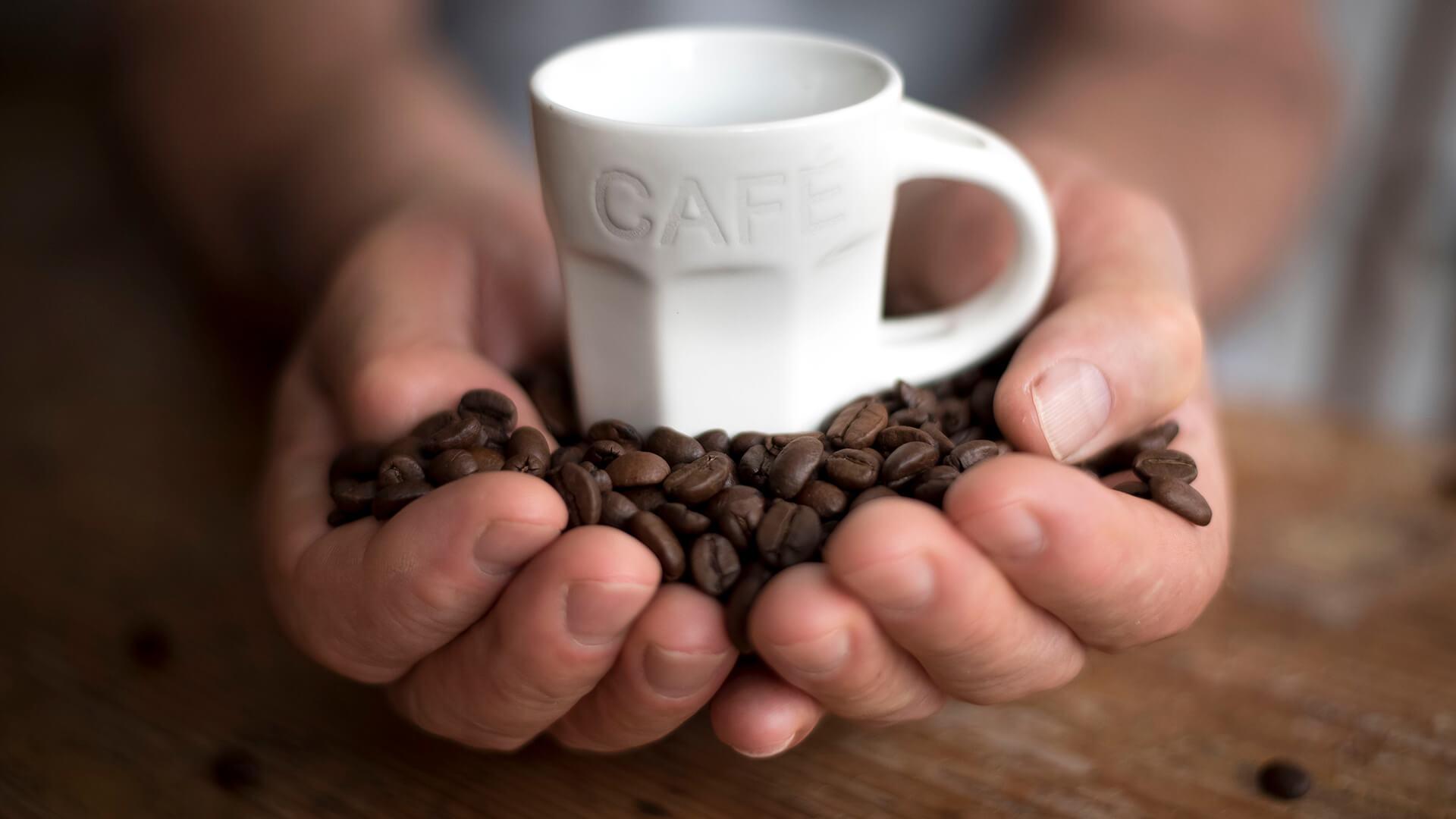 07 Prava kafa VS Kafa bez kofeina