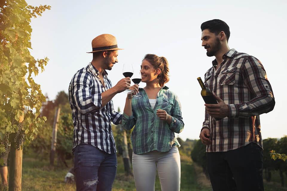 04 Slatko vino od kiselog grozdja
